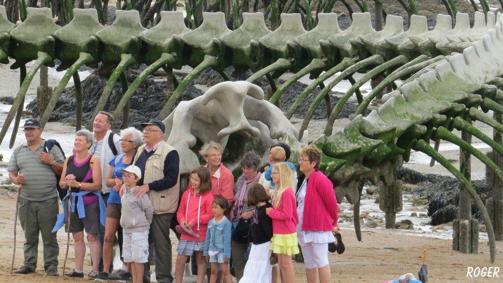 Saint Brévin 7 Juillet 2015