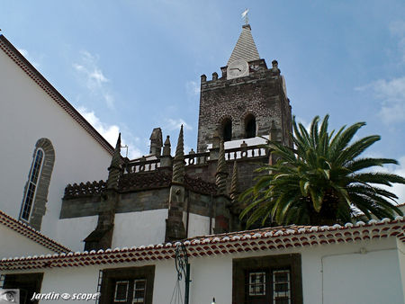 8755_Cath_drale_Funchal