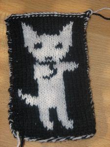 chat_blanc_et_noir
