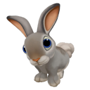 icon_rabbit_adult_graycottontail 128px
