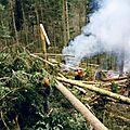 Save0004 Exploitation tempête de 1999 Tignécourt 88
