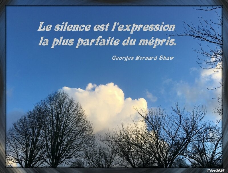 le silence expression mepris