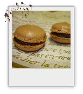 macarons_chocolat
