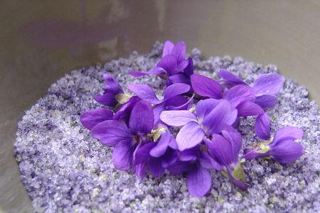 Violettes_016