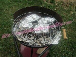 Cuisses de poulet marinées cuites au barbecue21
