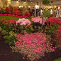 Floralies 073