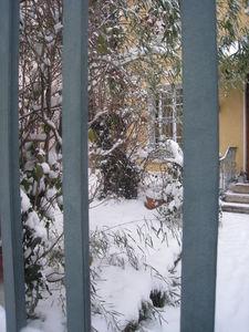 maison_sous_la_neige_9_janv_10