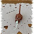 Chat jouant avec pelotte 1