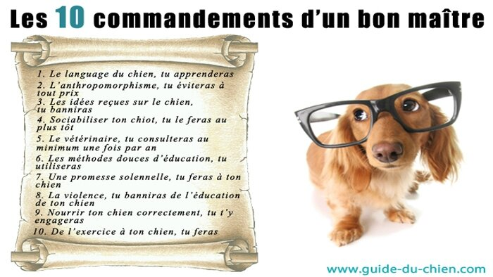10-commandements-dun-bon-maitre1