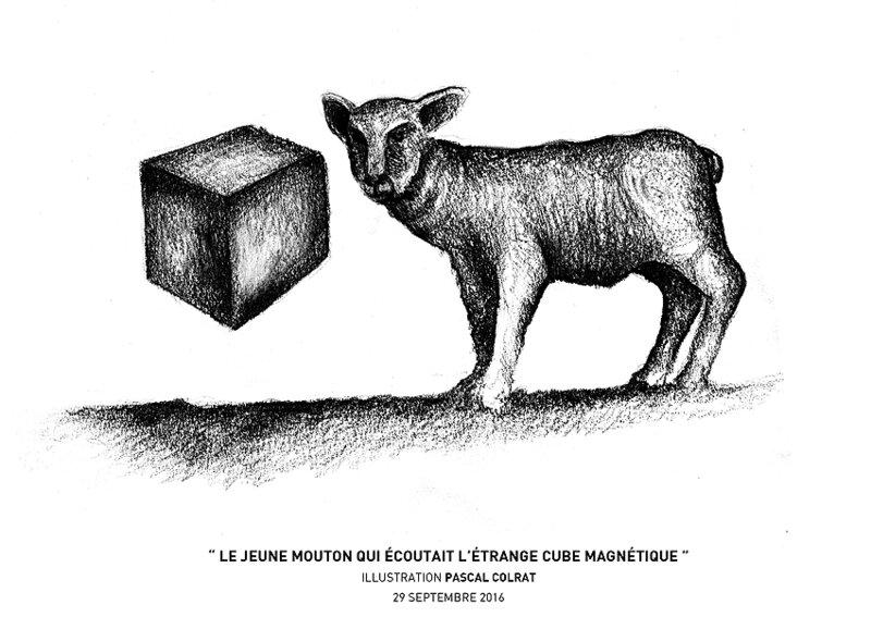 __le_jeune_mouton_qui_e_coutait_l_e_trange_cube_magne_tique__