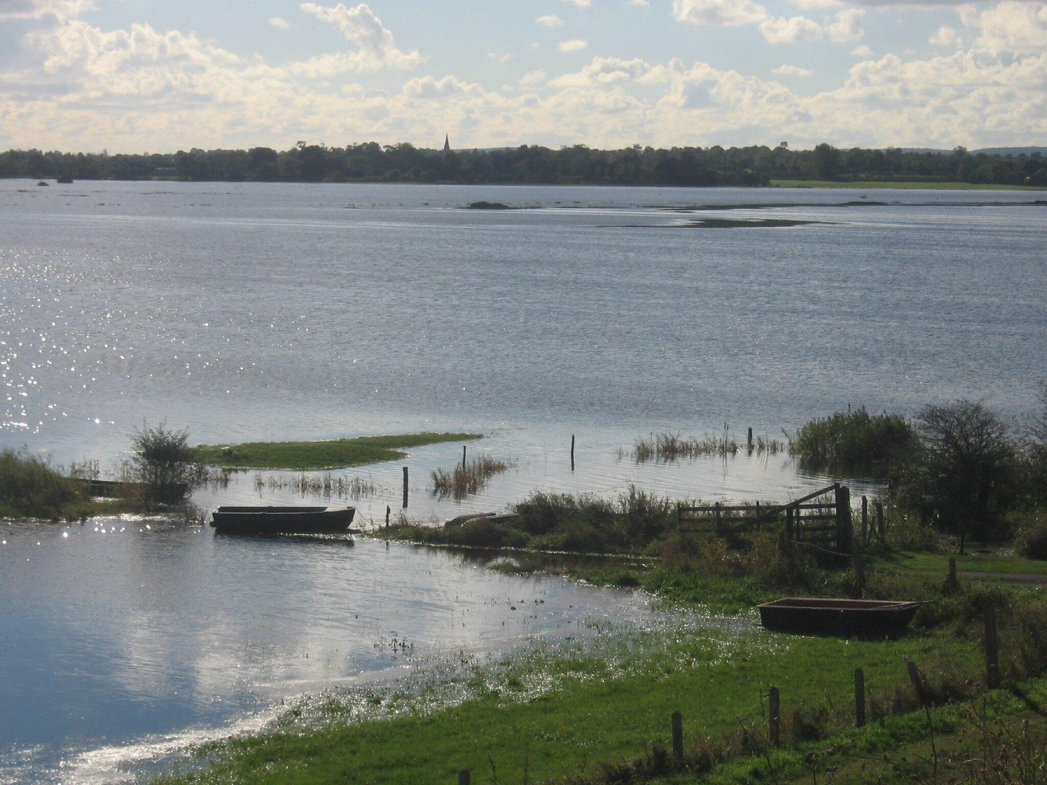 Le marais du Pommier Houesville 14 octobre 2012 034