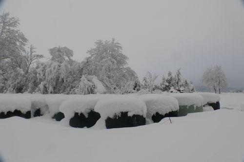 2008 12 18 Neige est givre, formation de congères