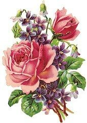 rose-clipart