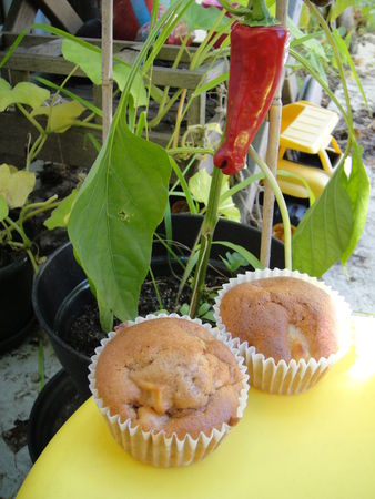 110812_muffins_pommes_poires
