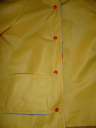 cire jaune (8)