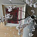 Le cerisier en fleurs