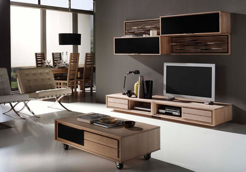 salon meuble tv composition 6 photo de clorofil meubles et d coration cologiques. Black Bedroom Furniture Sets. Home Design Ideas