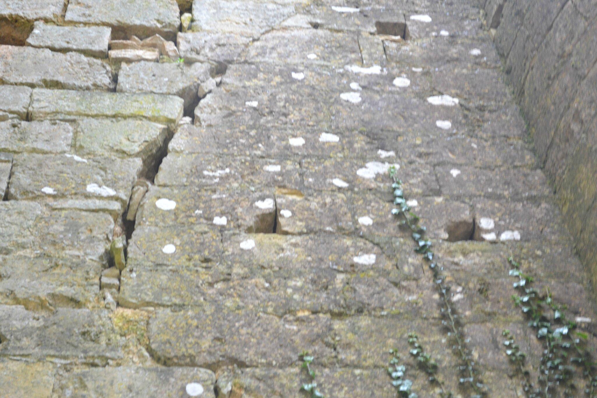 prieuré fontevriste au Dame a tusson charente