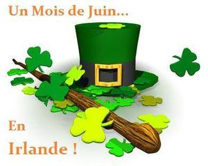 Logo mois irlandais