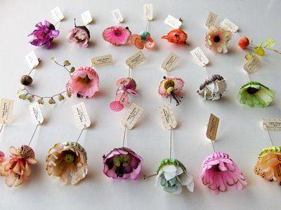 Fleurs_piques___face