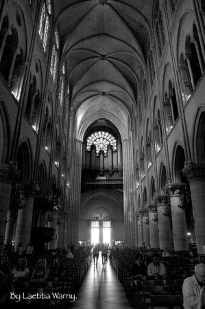 Notre_Dame_VII
