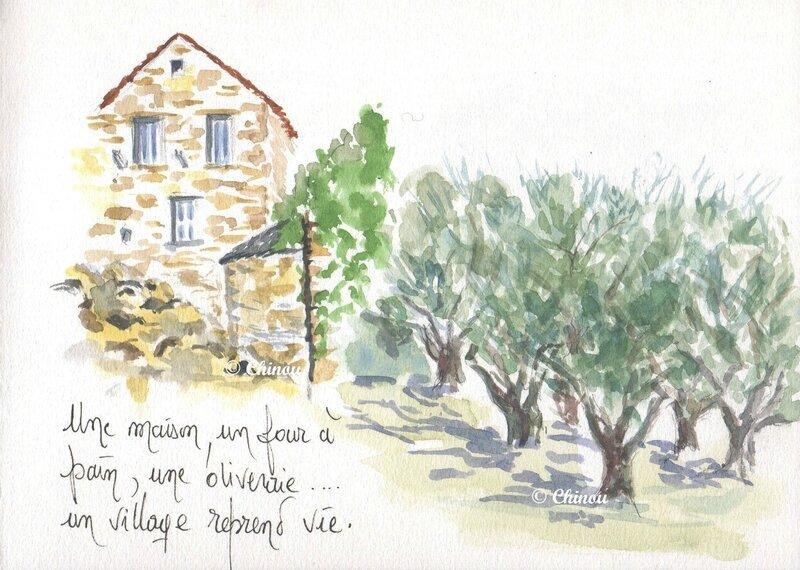 Village et oliveraie