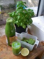 jus vert legumes extraits