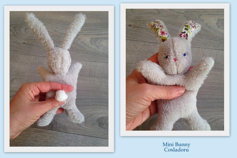 Mini Bunny4