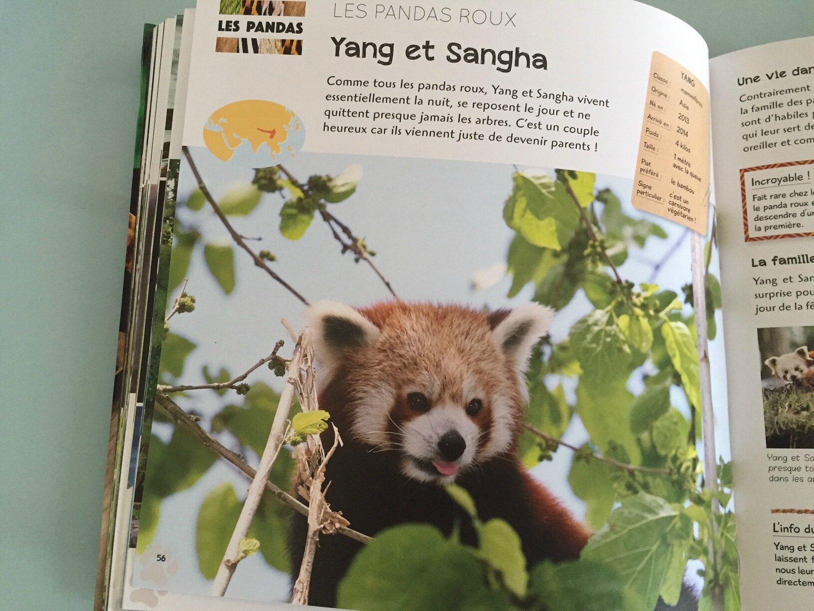 Moi J Adore Une Saison Au Zoo Le Coin Du Livre