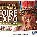 Foire expo de douai (59) du 6 au 15 septembre 2014