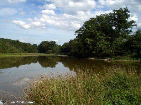 Le bout de l'étang à Drulon