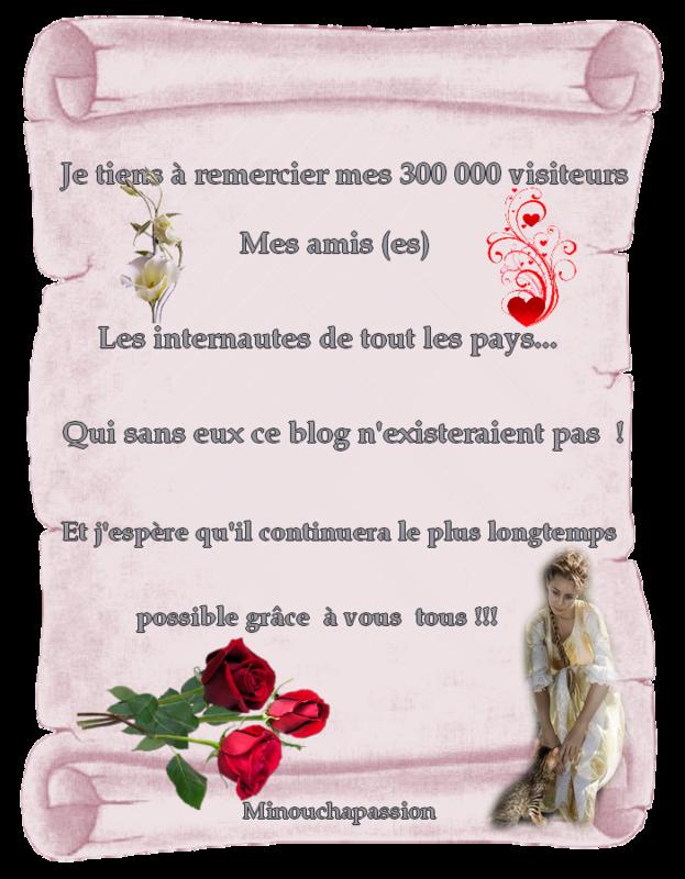 300 000 VISITEURS REMERCIEMENT