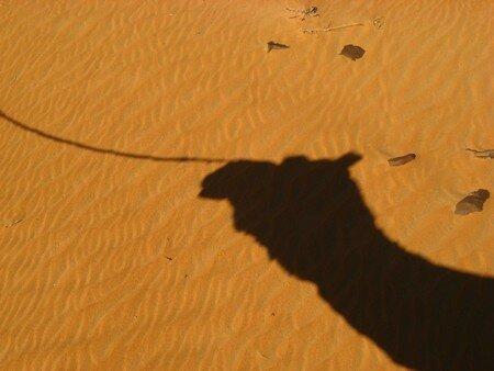 071111_mauritanie_0236