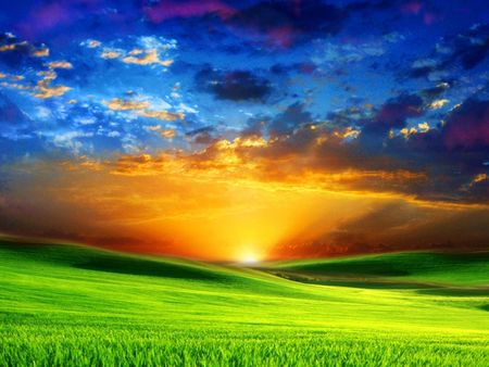 beautiful_sunrise_on_green_meadow