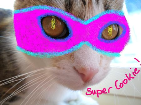 Super_Cookie