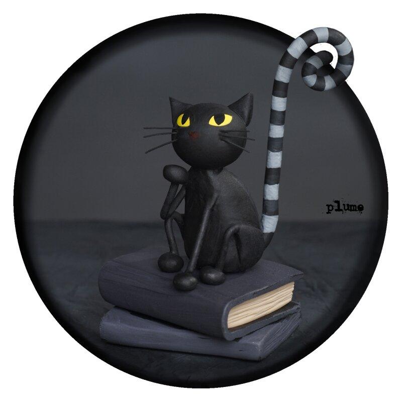 ITOLAB le chat noir
