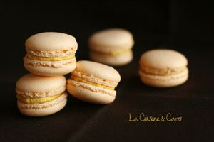 macaron_citrouille