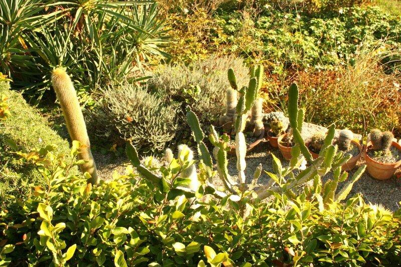 Toutes les beaut s du monde - Beaumont monteux jardin zen ...