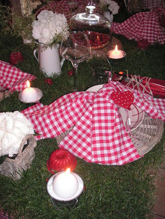 table_picnic_035