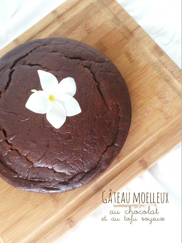 Gâteau moelleux au chocolat et au tofu soyeux de Delphine