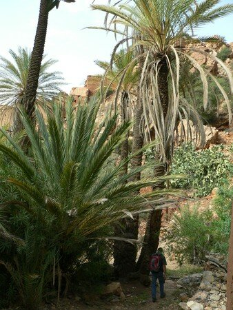 maroc__153_