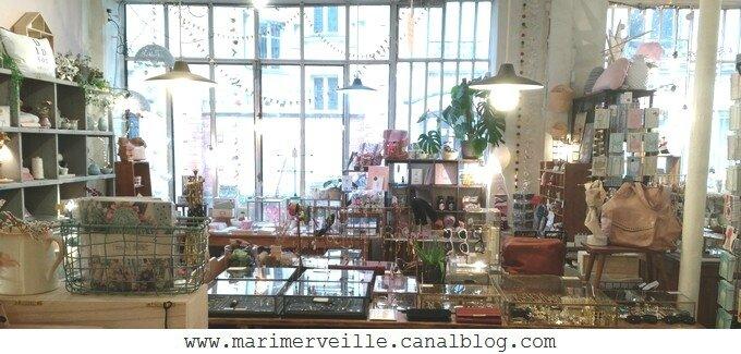 Boutique les fleurs passage Josset paris -2 blog marimerveille