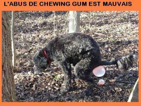 PAS DE CHEWIN