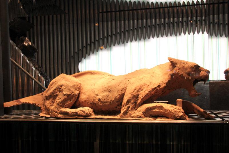 sculpture_chocolat_tigre