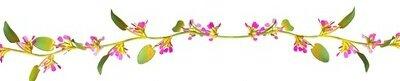 bandeau fleur