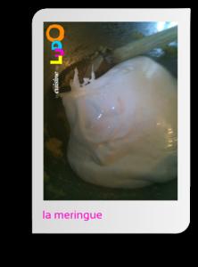 macaron_03