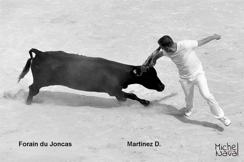 ISTRES 19