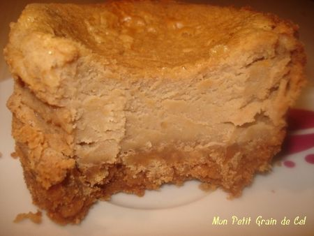 CheesecakeSpeculoos4