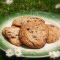 Cookies noix de pécan et chocolat noir