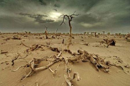 changement_climatique_imag